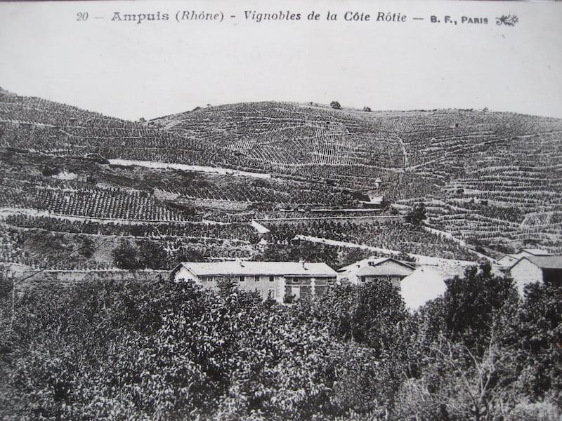 Ancienne photo Côte Rôtie