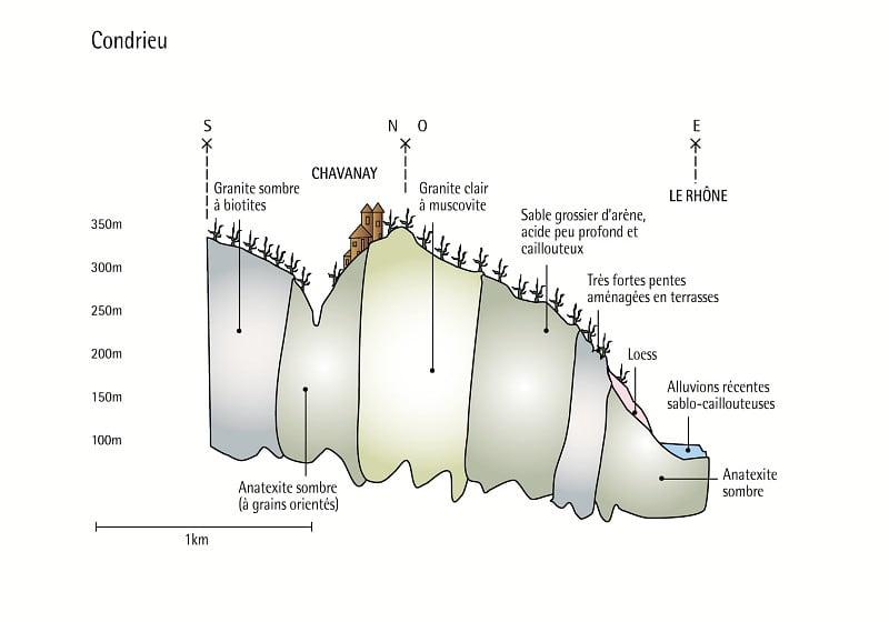 Condrieu Coupe Géologique © Georges Truc